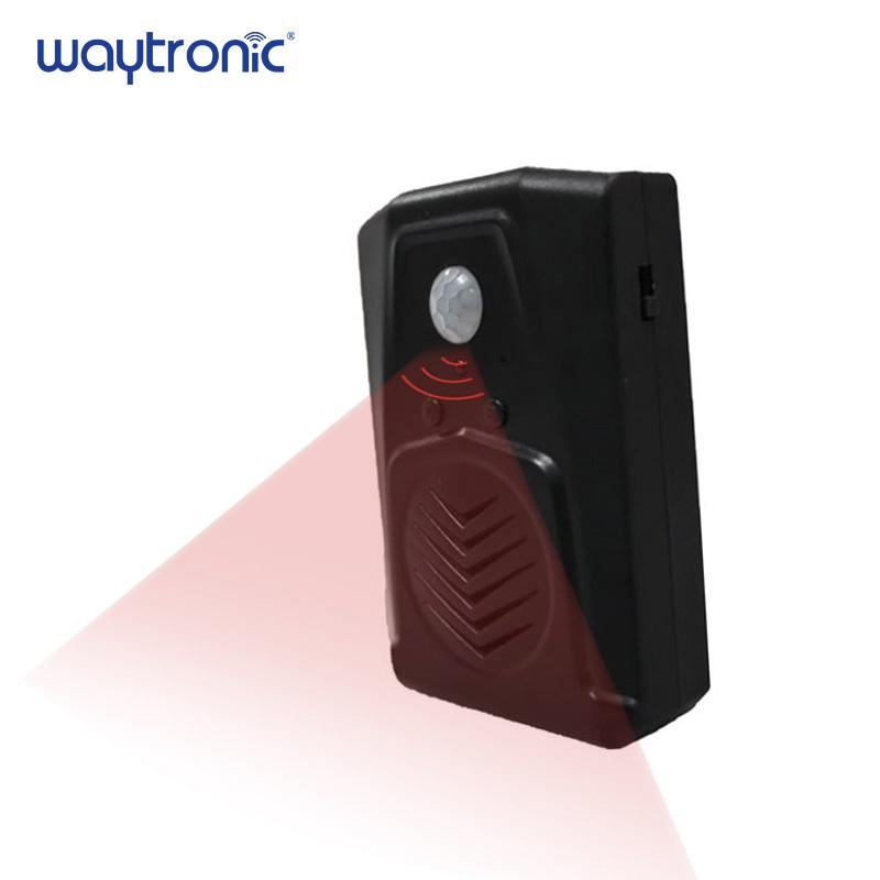 Black White Wireless Motion Sensor Nature Sound Box Bird Sound Speaker -  Buy Wireless Sound Speaker,Bird Sound Speaker,Nature Sound Speaker Product  on