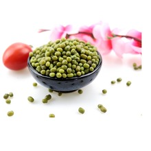 Hot sale 3.2mm HPS green mung bean price with good manufacture