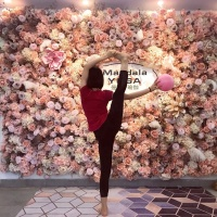 Customized 3D Effects Mix Plant Flower Wall Mats Artificial Florals Wall Rose Panel for Yoga Shop Decoration