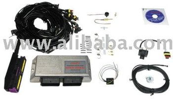 STAG-LPG / CNG, gas injection system