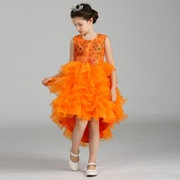 Children Frock Design Bubble Cake Trailing Dress Artificial Sequin Embroidered Dress for Girls LM8323