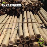 Eco-friendly bamboo construction material 100mm treated natural bamboo poles / raw bamboo poles for building