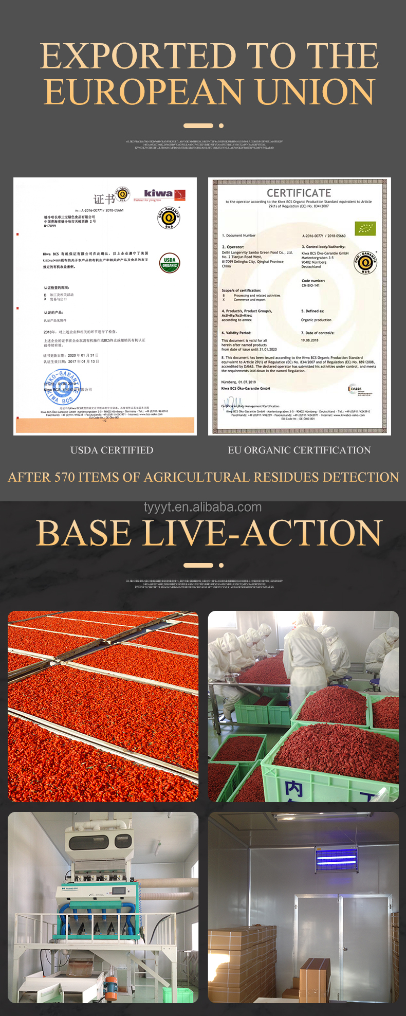 EU834-1007 certification health products dried fruit red wolfberry goji berry gojiberry price