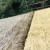 Wholesale PE fireproof artificial thatch plastic synthetic roofing