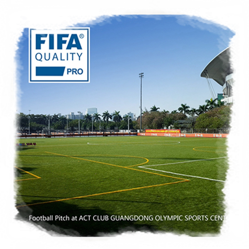 50 Mm Standaard Voetbal Gras X50E Kunstgras Voor Outdoor Voetbal Hof Gazon Artificiel