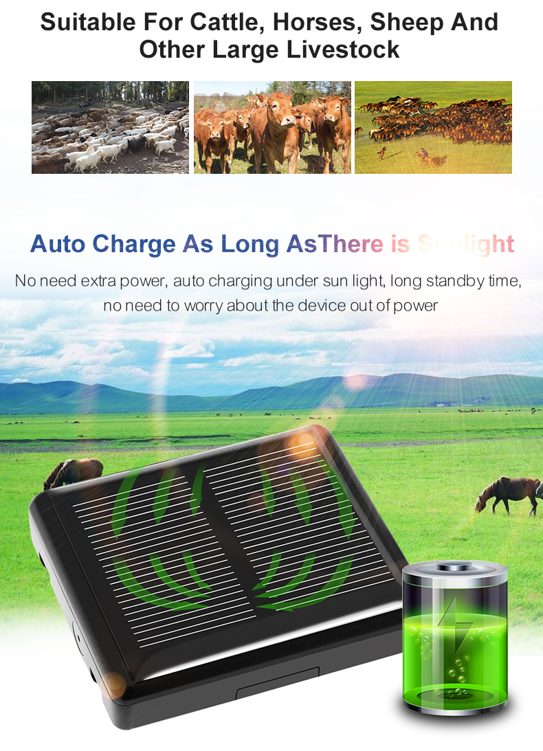 V26 Waterproof Solar Powered Cow GPS Tracker for Animal