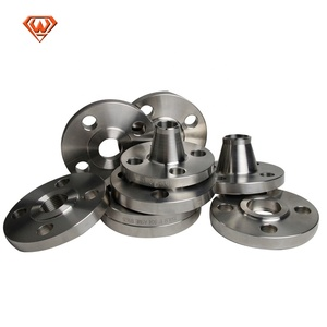 ANSI Stainless Steel Forged Pipe Flange