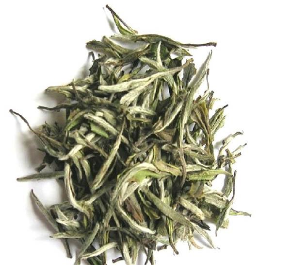 Fujian White Tea Bai Mu Dan - 4uTea | 4uTea.com