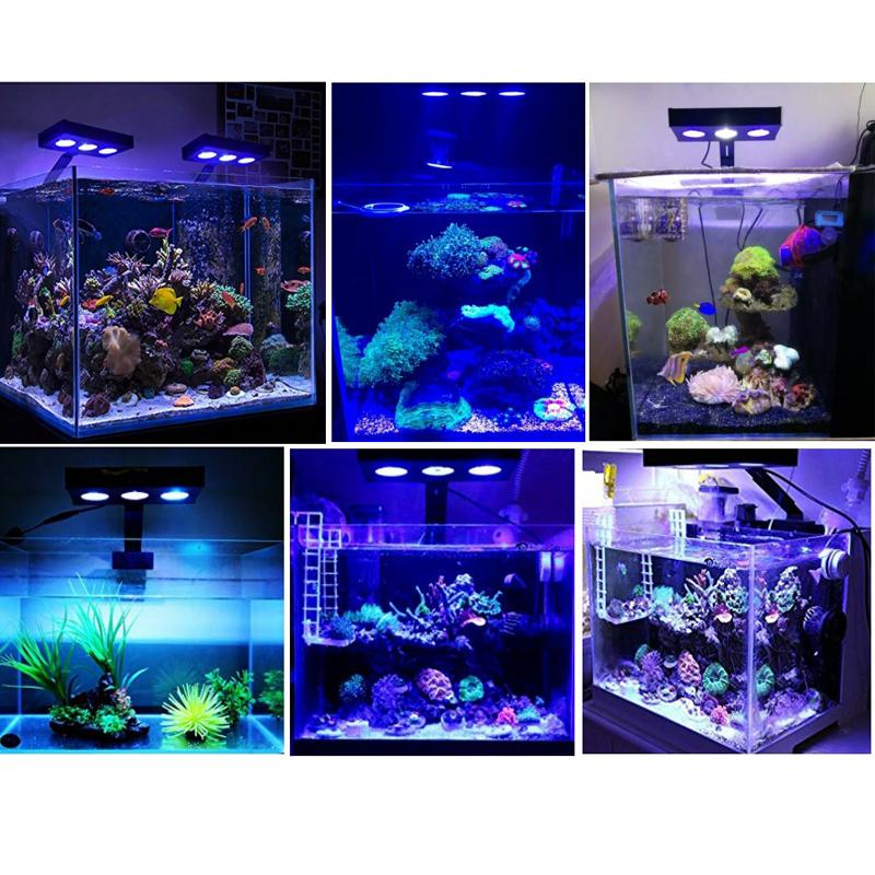 ไฟLedแนวปะการังเปลี่ยนสีได้30Wพร้อมระบบควบคุมแบบสัมผัสจำลองพระอาทิตย์ขึ้น