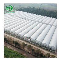 low cost agricultural hydroponic tunnel plastic film polyethylene multi-span greenhouse