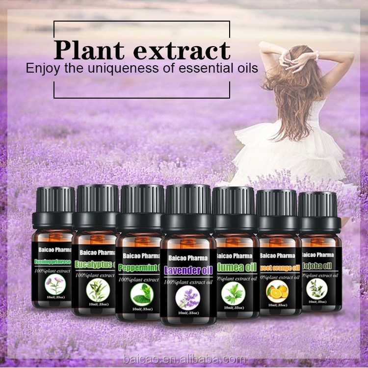 Wholesale buy Natural and pure Aromatherapy evening primrose oil essential oil
