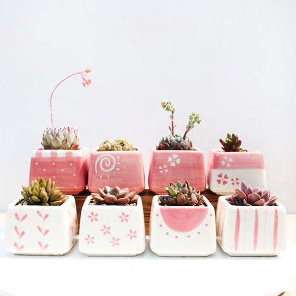Cute Pink Round Square Succulent Plant Pot For Home Decoration