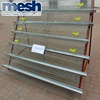 commercial quail layer cage best sales