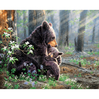shenzhen high quality premium lovely forest bear abstract art for DECOR HOME DECOR