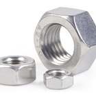 Steel Nut Factory Sell DIN934 Stainless Steel 304 Hex Nut