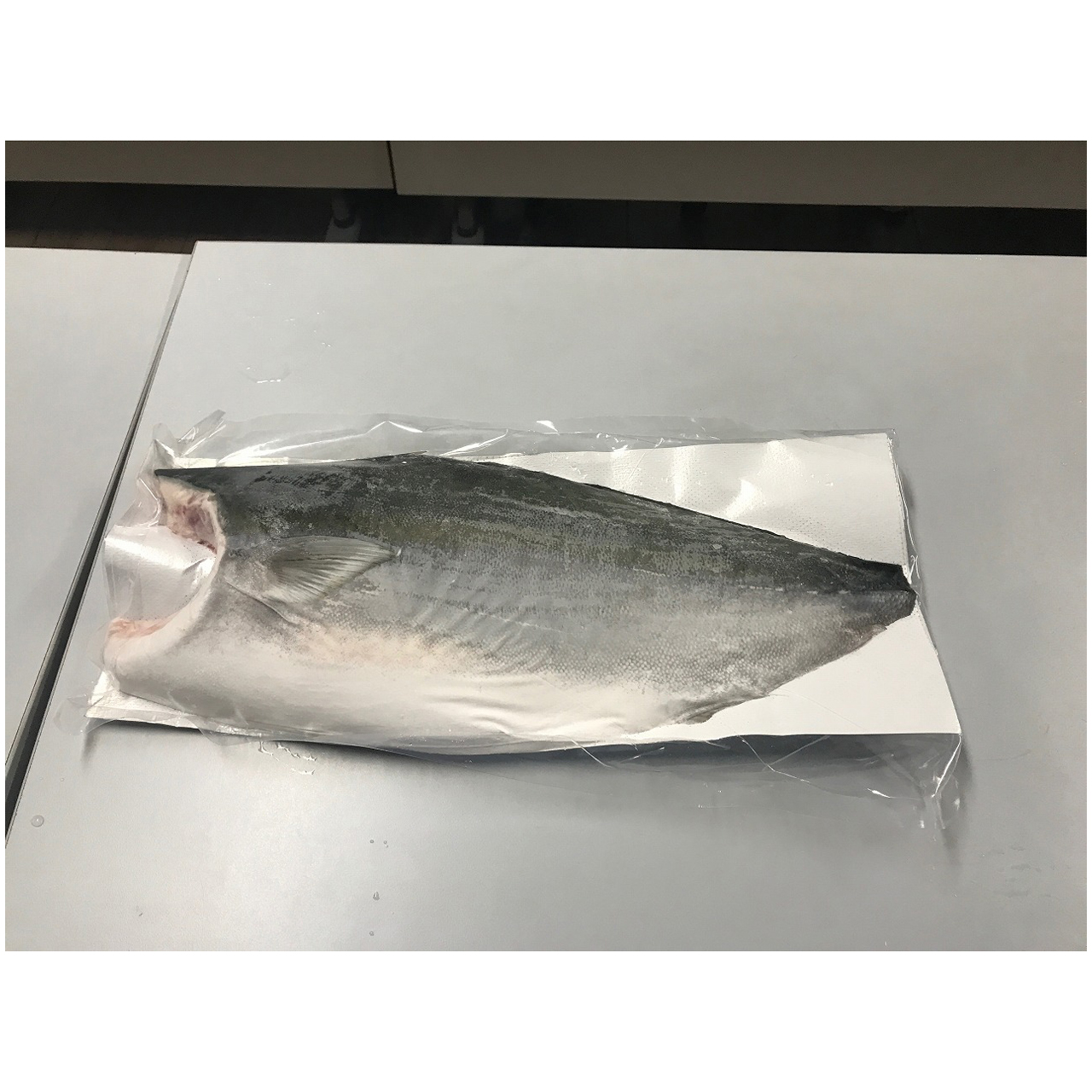 high quality dry delaying discoloration fresh export seafood fresh