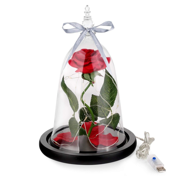 Factory Wholesale Clear Bell Jars Glass Dome Light Terrarium for Flower/Jewelry