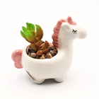 Most popular unicorn succulent plants flower pot