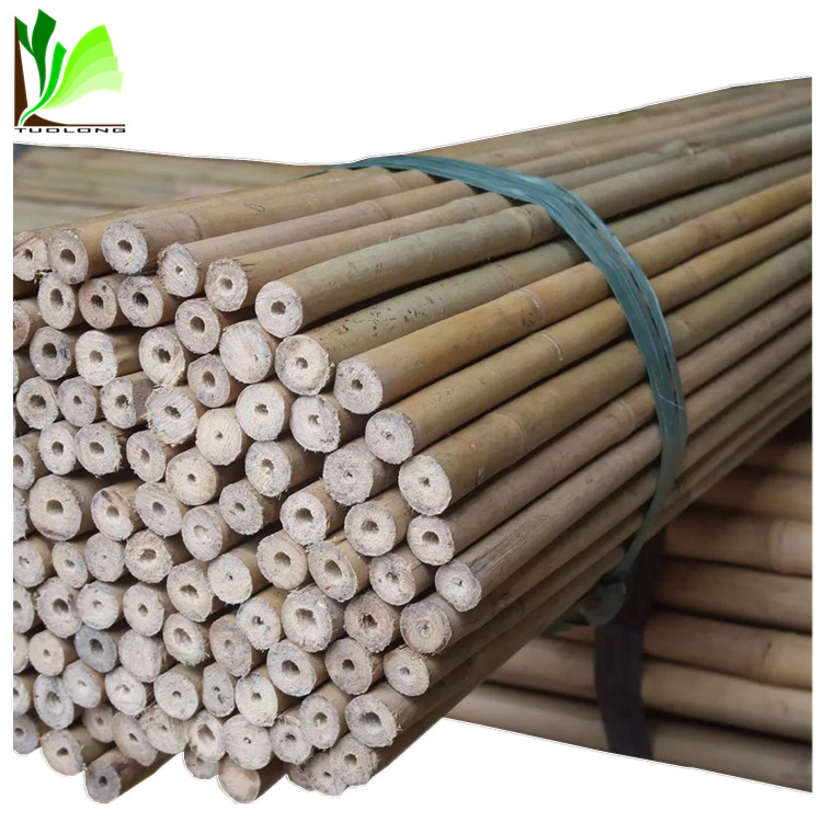 Cheap Plant Support Stick Bamboo Poles