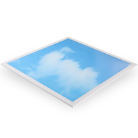 2FTx2FTCustomized Led Sky Blue Panel Lighting Fixtures Indoor Decorative Ceiling Panel