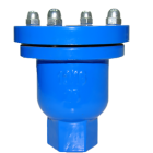 DN25 Ductile Iron Single Air Release Valve Thread Type Small Air Venting
