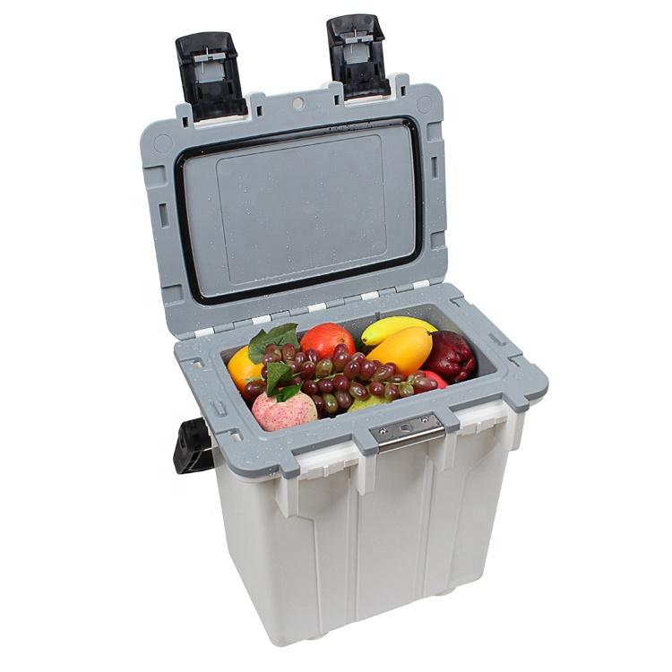 2020 yeni sert taşınabilir buz soğutma İçme gıda taze plastik buz balıkçılık plaj soğutucu kutu 20L