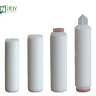 0.01 /0.02 Micron PTFE Pleated Membrane Filter Cartridge