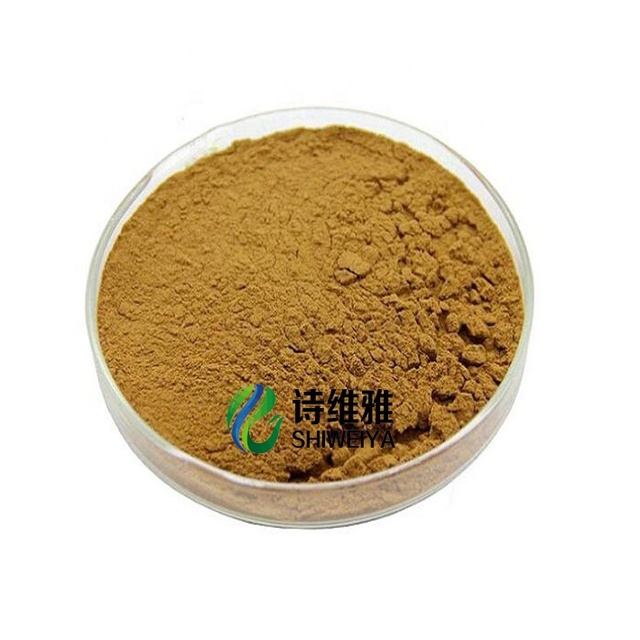 Male enhance extract-China Dodder Extract/Semen Cuscutae Extract