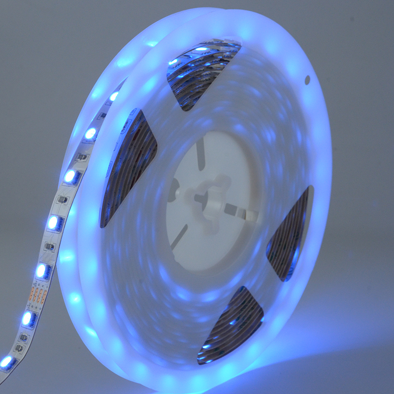 Cuttable 60LED 24V Interior IP20 CE listed RGB SMD5050 LED Strip light