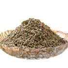 Wholesale popular spices product cumin seed spices