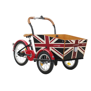 3 wheel mini cargo bike Cargo bicycle cargo tricycle for kids