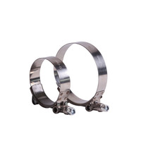 19mmm bandwidth SS304 stainless steel T bolt hose clamp