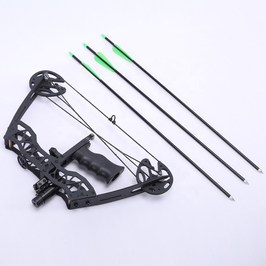 2020 new design Car Mini compound bow Self-defense Safe and durable car compound bow hunting