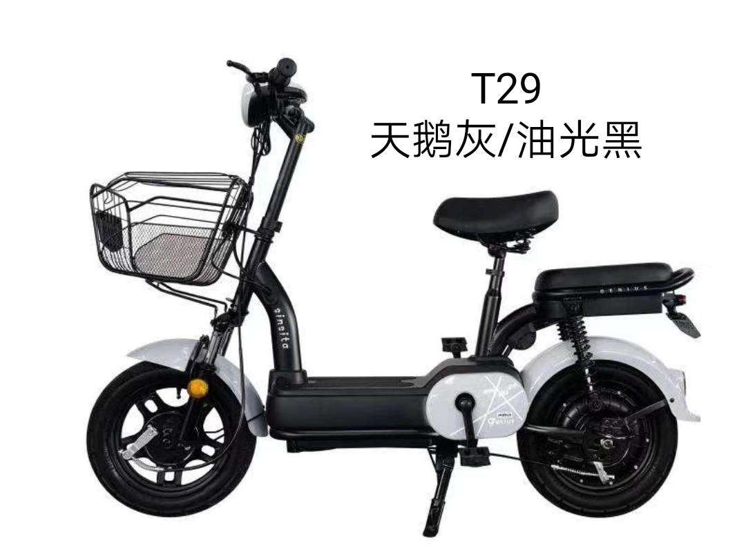 chinese new cheap 48v electric bicycle