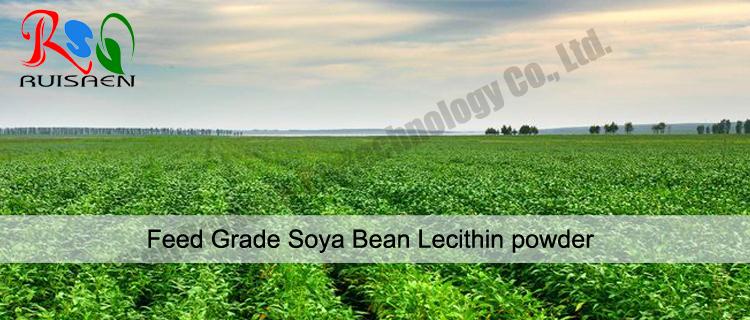 Food Grade SWP-P non-GMO Soya Bean Lecithin powder for bulk
