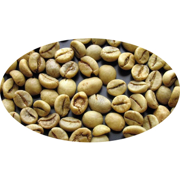 Whole Raw Arabica Coffee Beans Supplier Green Coffee Beans