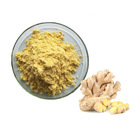 Hot Sale Chinese Dried Herbs Plant Ginger Root Extract Powder 5% Gingerol