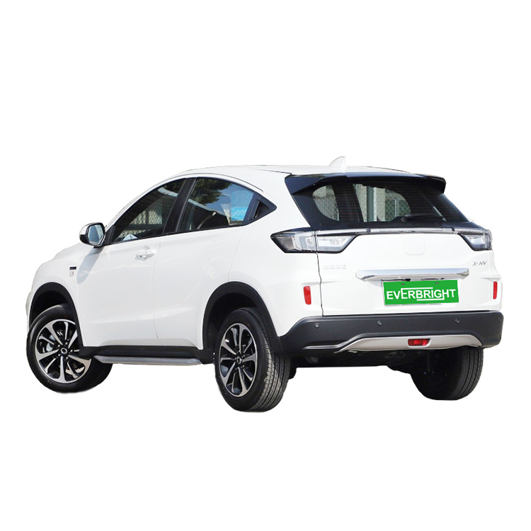 5 Seats Electric SUV Electric Car Without Driving Licence