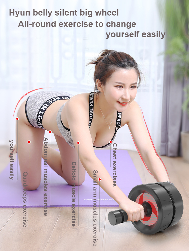 Best quality Portable Body Building Ab Wheel Roller for Home Gym