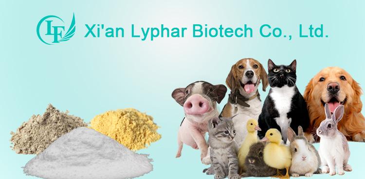 CAS 56-75-7 Médecine Vétérinaire Poudre Chloramphénicol
