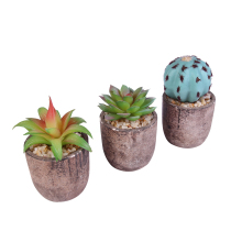 Mini Levensechte Real Touch Kleine Kunstmatige Succulenten Mini Faux Vetplanten Pot Voor Indoor Outdoor Decoratie