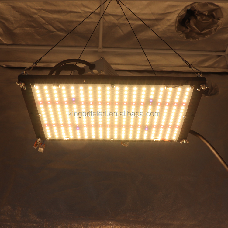 Voorgemonteerd Kingbrite Quantum Board Uv Ir Qb288 V2 Lm301B Top Bin Met Rode 660nm Led Grow Light