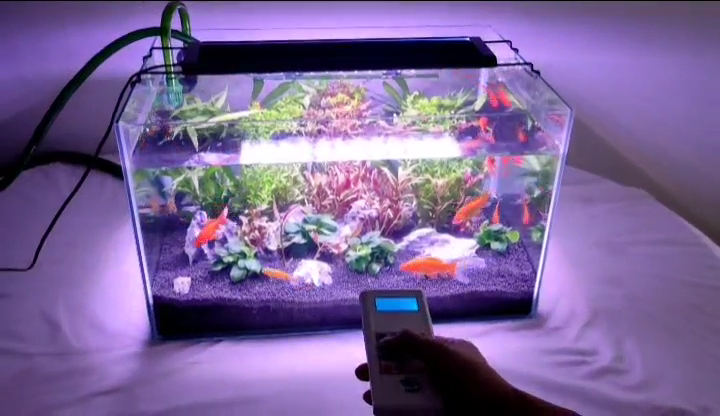 Aquarium LED  lamp 12V 20W planted Fish Tank Light for freshwater With Remote controller