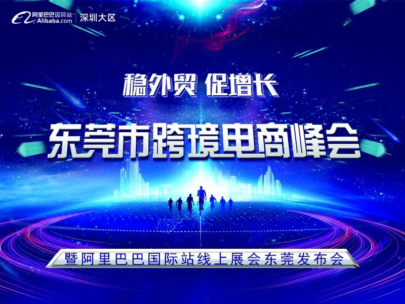 稳外贸 促增长-东莞市跨境电商峰会