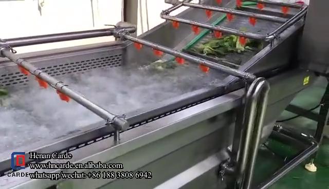 Industriële Fruit Groente Wasmachine En Droger Koeler Transportband Bubble Spagy Wassen Cleaning Machine Productielijn