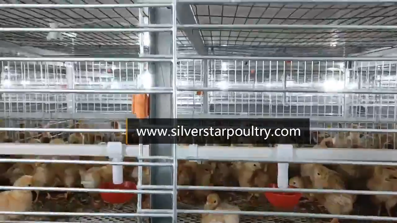 poultry farm equipment 3 or 4 tier chicken cage broiler breeding chicken cage