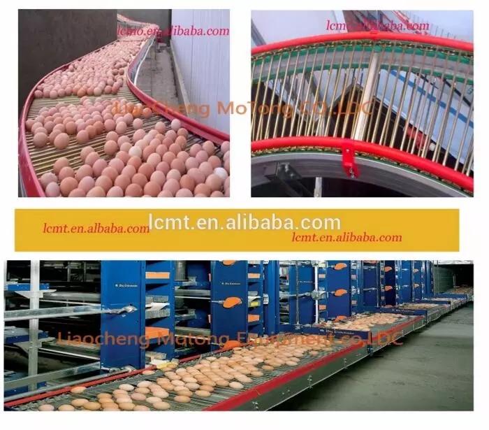 Ei Schicht Huhn Käfig Für Südafrika Geflügelfarm Huhn Haus