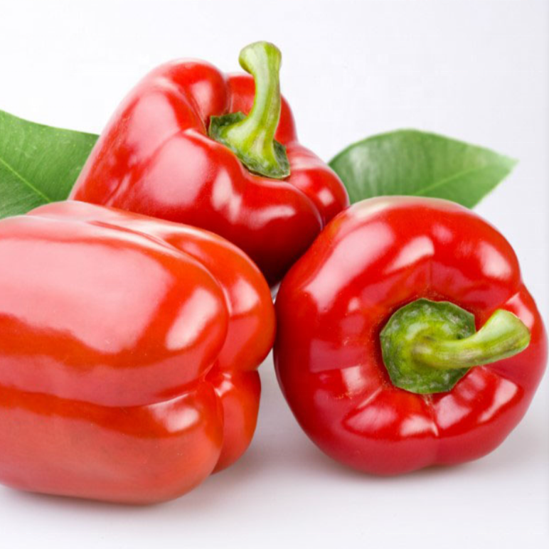 High Yield Chinese Vegetable <strong>Seeds</strong> Red Sweet Bell <strong>Pepper</strong> <strong>Seeds</strong> for Sale