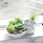 Ceramic Animal pot with Artificial Succulent for Home decoration