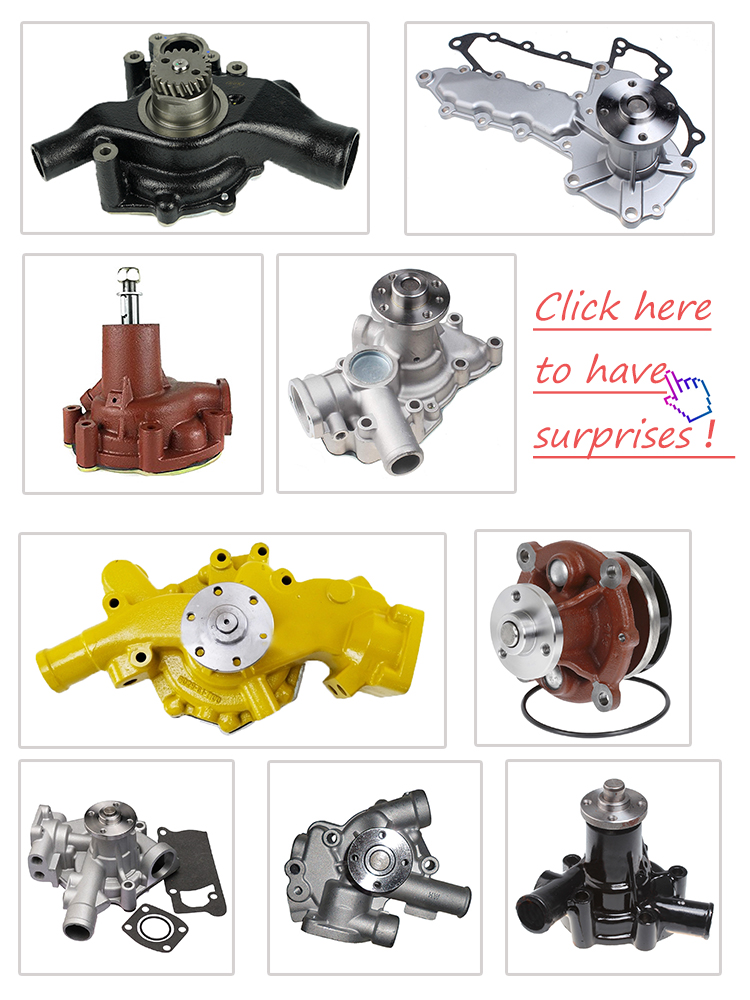 Professional Supplier 4BT 6BT 4429404  Water Pump